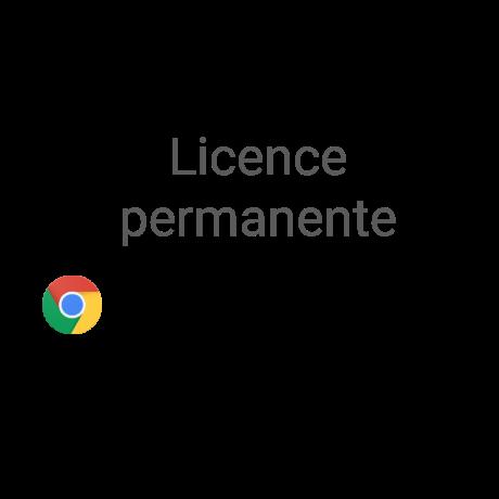 Licence Chrome Entreprise
