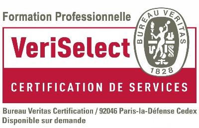 GoWizYou obtient la certification VeriSelect  pour ses activités de Formation Continue
