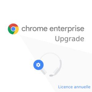 Chrome Enterprise Upgrade annuelle