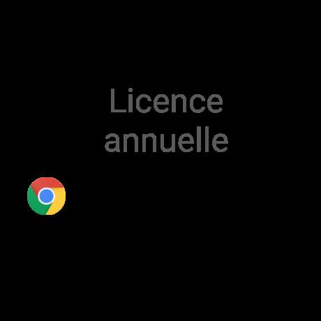 licence annuelle Chrome Entreprise