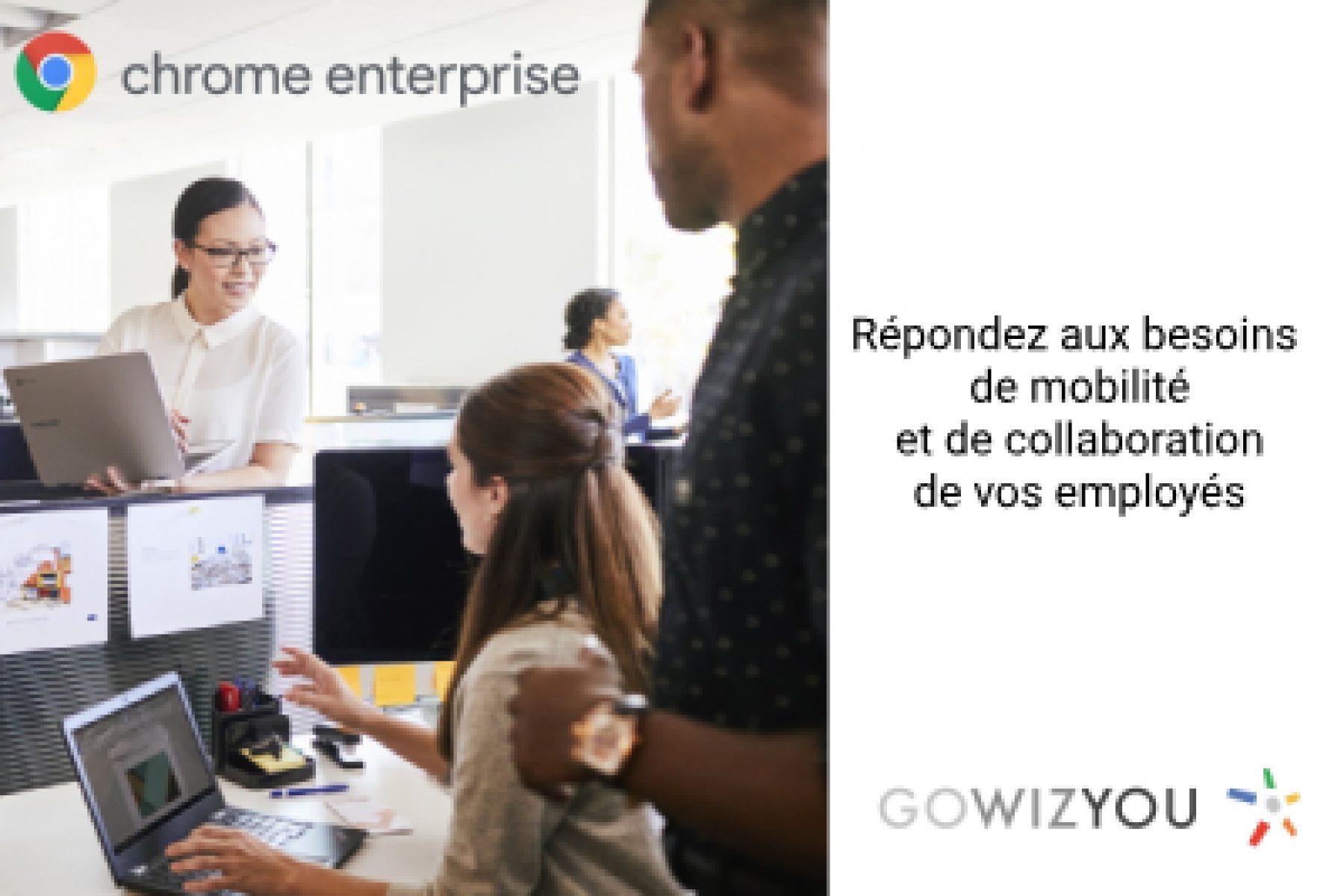 Gowizyou Chrome Entreprise